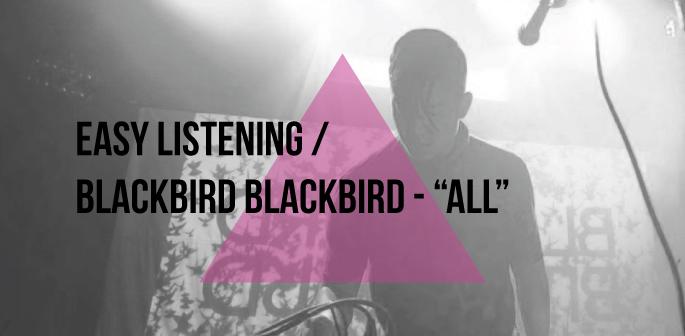 chrome-bumper-film-blackbird-blackbird